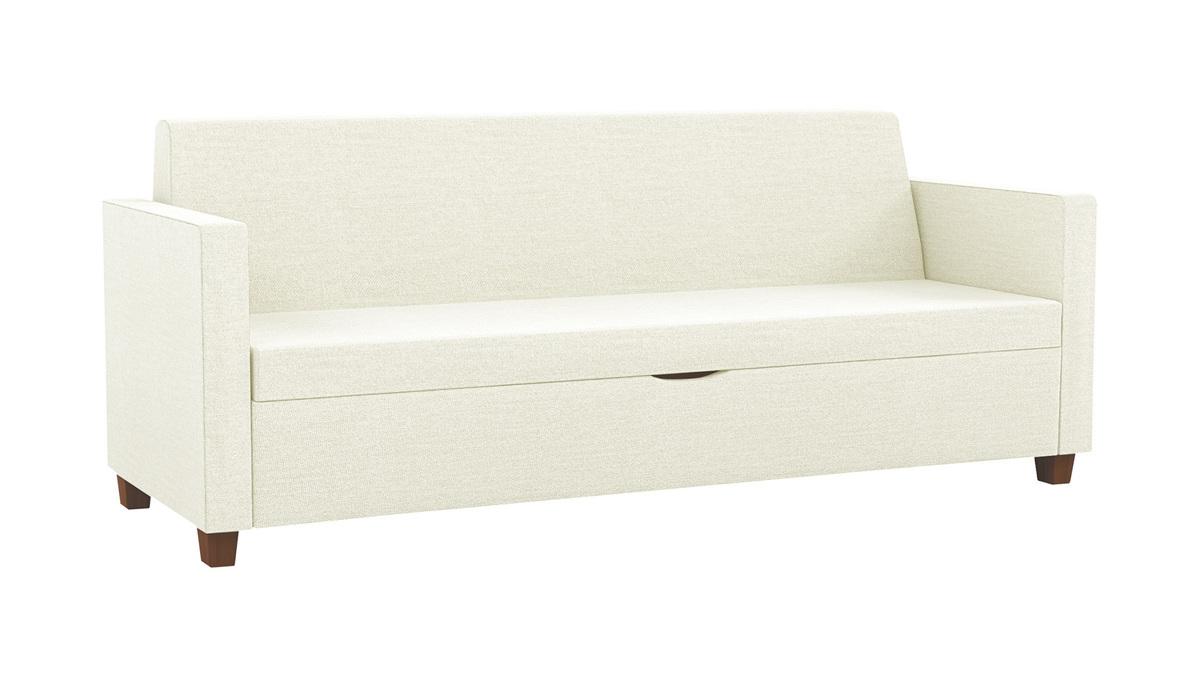 Carson Sleep Sofa CRS176F